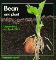 Bean and Plant