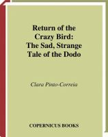 Return of the Crazy Bird