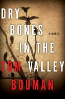 Dry bones in the valley : a novel