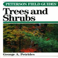 A Field Guide To Trees And Shrubs : Northeastern And North-central United States And In Southeastern And South-central Canada