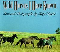 Wild Horses I Have Known