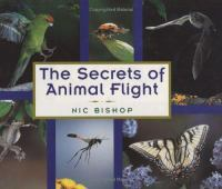The Secrets of Animal Flight