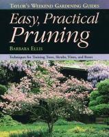 Easy, Practical Pruning