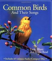 Common Birds