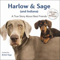 Harlow and Sage (and Indiana)