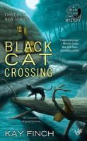 Black cat crossing.