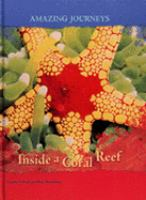 Inside A Coral Reef