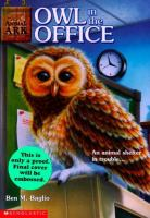 Owl In The Office