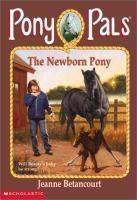 The Newborn Pony