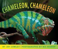 Chameleon, Chameleon