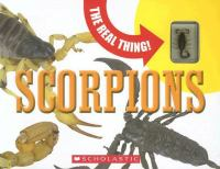 The Real Thing! Scorpions