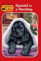 Spaniel in A Stocking