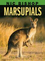 Nic Bishop Marsupials