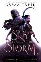A Sky Beyond the Storm: A Novel