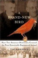 A Brand-new Bird