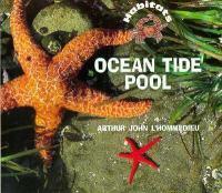 Ocean Tide Pool