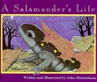 A Salamander's Life