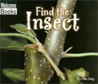 Find the Insect