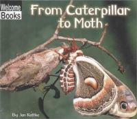 From Caterpillar to Moth