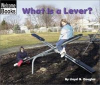 What Is A Lever?