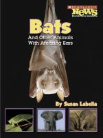 Bats and Other Animals With Amazing Ears