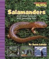 Salamanders and Other Animals With Amazing Tails