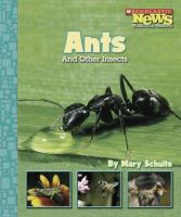 Ants and Other Insects