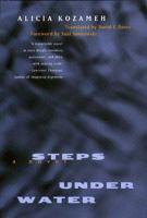 Steps Under Water