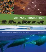 Animal Migration