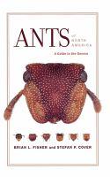 Ants of North America