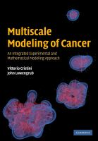 Multiscale Modeling of Cancer