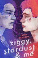 Image: Ziggy, Stardust & Me
