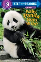 A Baby Panda Goes Wild