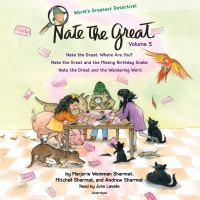 Nate the Great Stories