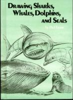 Drawing Sharks, Whales, Dolphins, and Seals