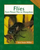 Flies: From Flower Flies To Mosquitoes