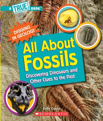 All about fossils  discovering dinosaurs and other clues to the past