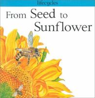 From Seed to Sunflower