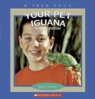 Your Pet Iguana