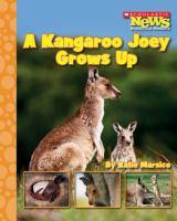 A Kangaroo Joey Grows up