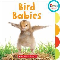 Bird Babies