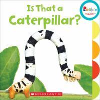 Is That A Caterpillar?