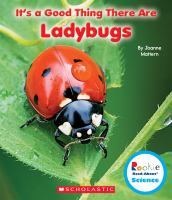 It's A Good Thing There Are Ladybugs
