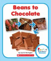Beans to Chocolate