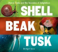 Shell, Beak, Tusk