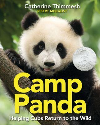 Camp Panda book jacket