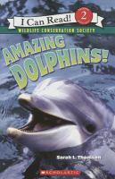 Amazing Dolphins!