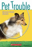 Smarty-pants Sheltie