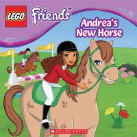 Andrea's New Horse