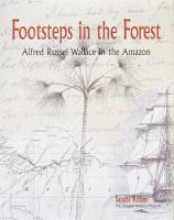 Footsteps In The Forest